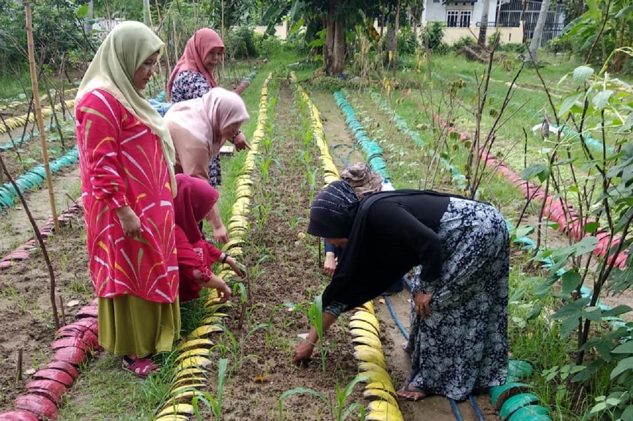 Foto: Dosen Agroteknologi Lakukan Penyuluhan Bagi Kelompok Tani Wanita